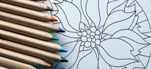 drawing flower mandala