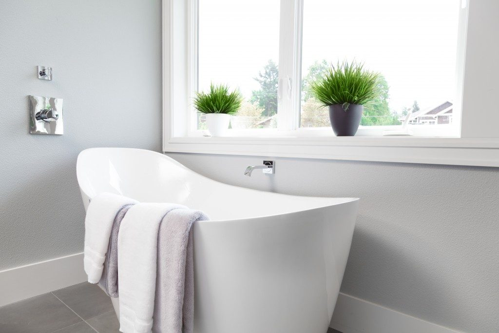 Bathtub with plants next to window