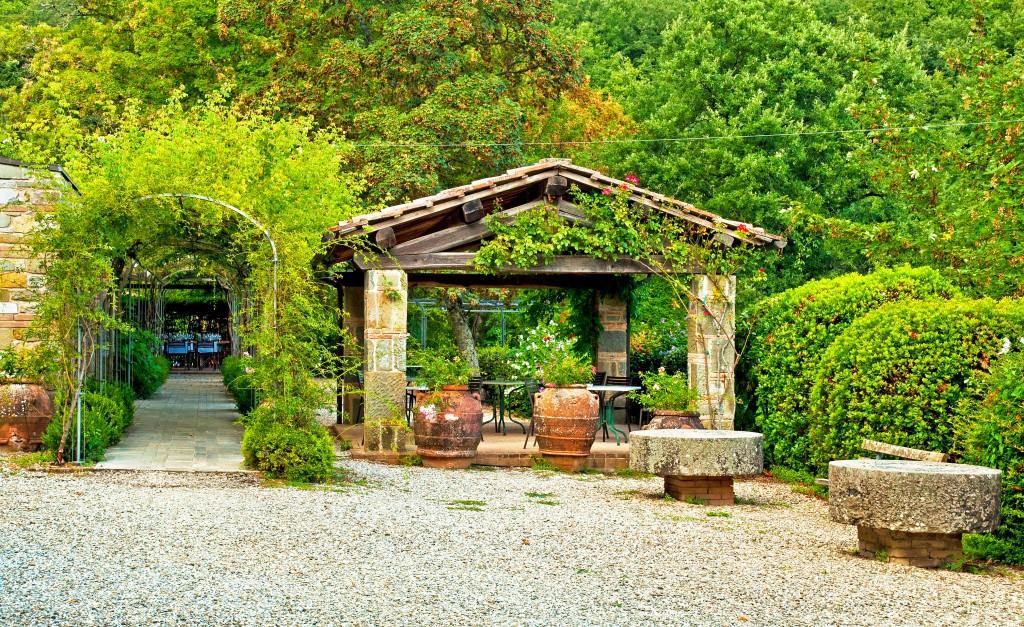 Garden outside the house