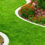 For Aesthetic Appeal: 4 Principles of Landscape Design You Should Know