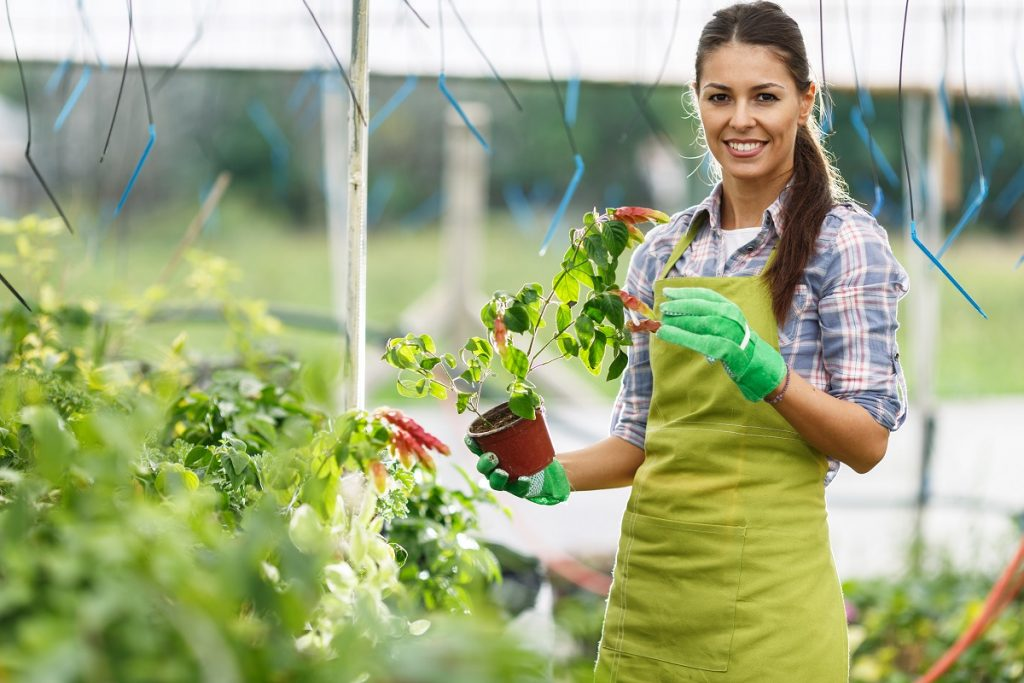 Woman holding plants in a greenhouse