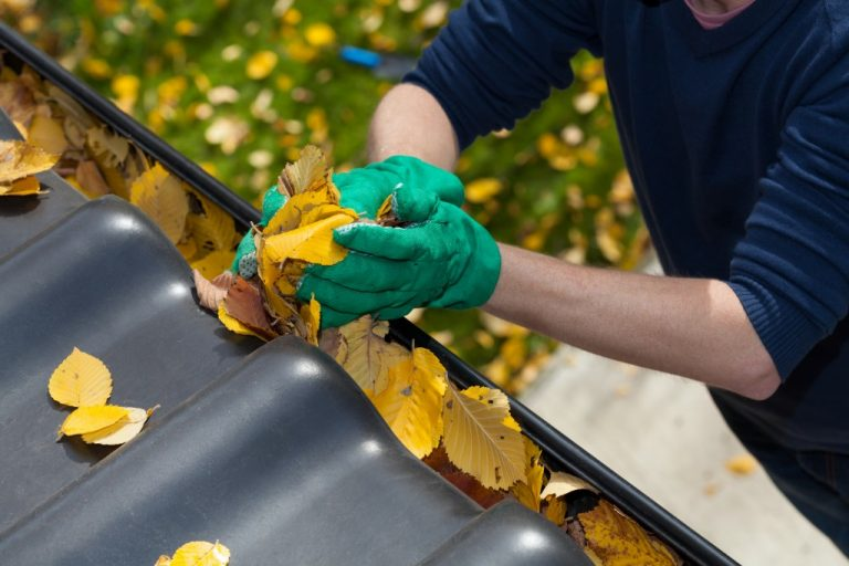 Roof gutter with leaves being removed