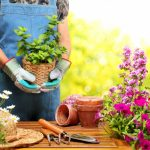 Improve Your Garden with These Upgrades
