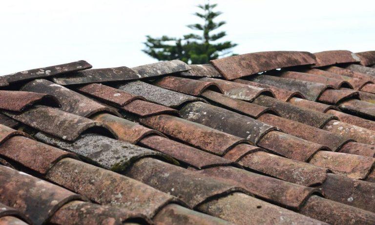 brown-roof