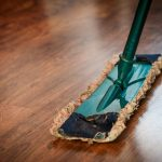 Common Home Pests & How To Deal With Them