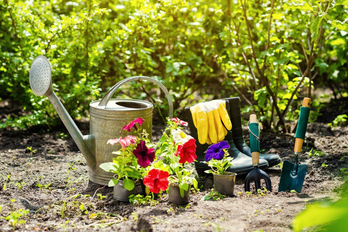 gardening tools and materials