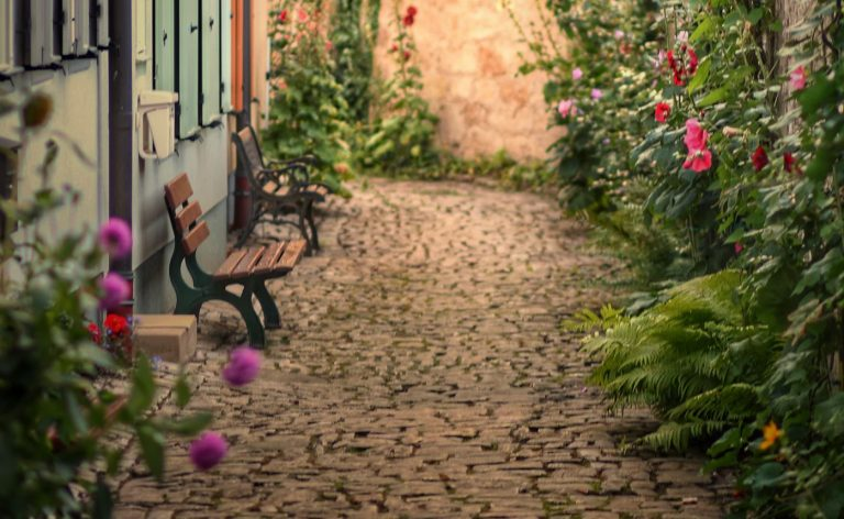 Quick Fixes to Make Your Garden Look Great